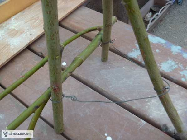The wire holds the front twig on, then winds around the back leg to prevent it from spreading too far