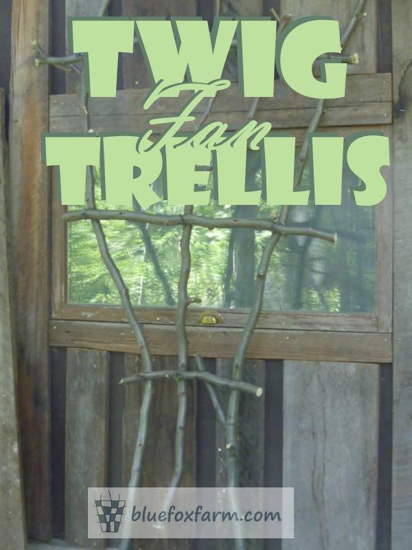Twig Fan Trellis  - make it rustic and unique