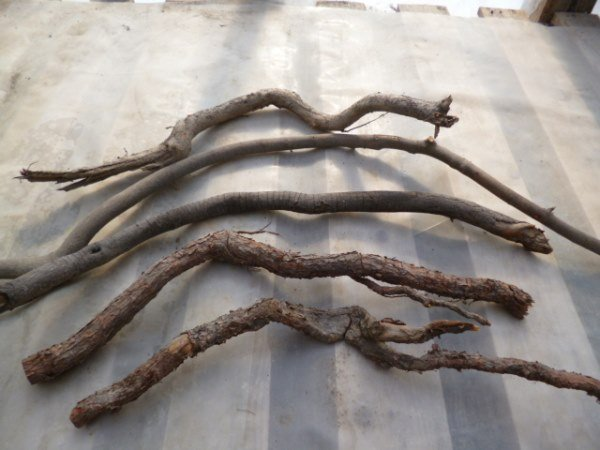 Rustic and wiggly twigs make perfect handles...