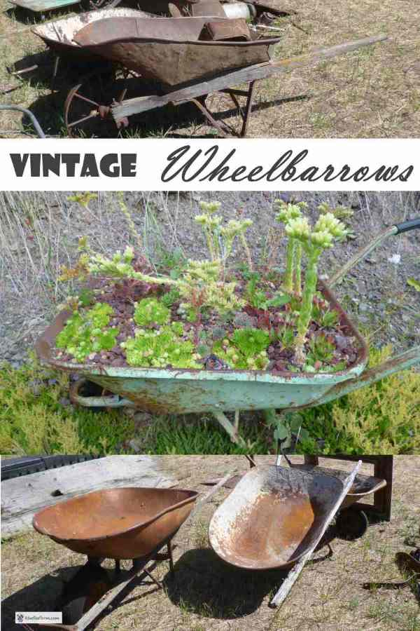 Vintage Wheelbarrows