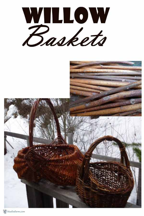 Willow Baskets have been around for centuries; artisans have enjoyed using the beautiful and versatile willows for many rustic crafts, to provide useful household objects...