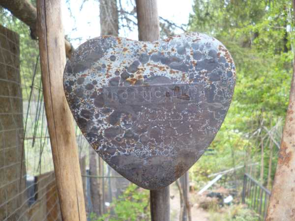 Rusty Heart Shaped Tin